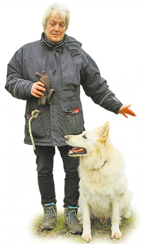 Heiko Schwarm hat vor sechs Jahren mit seinem Hund Odin zum GHV-Mosling gefunden. FOTO: CP