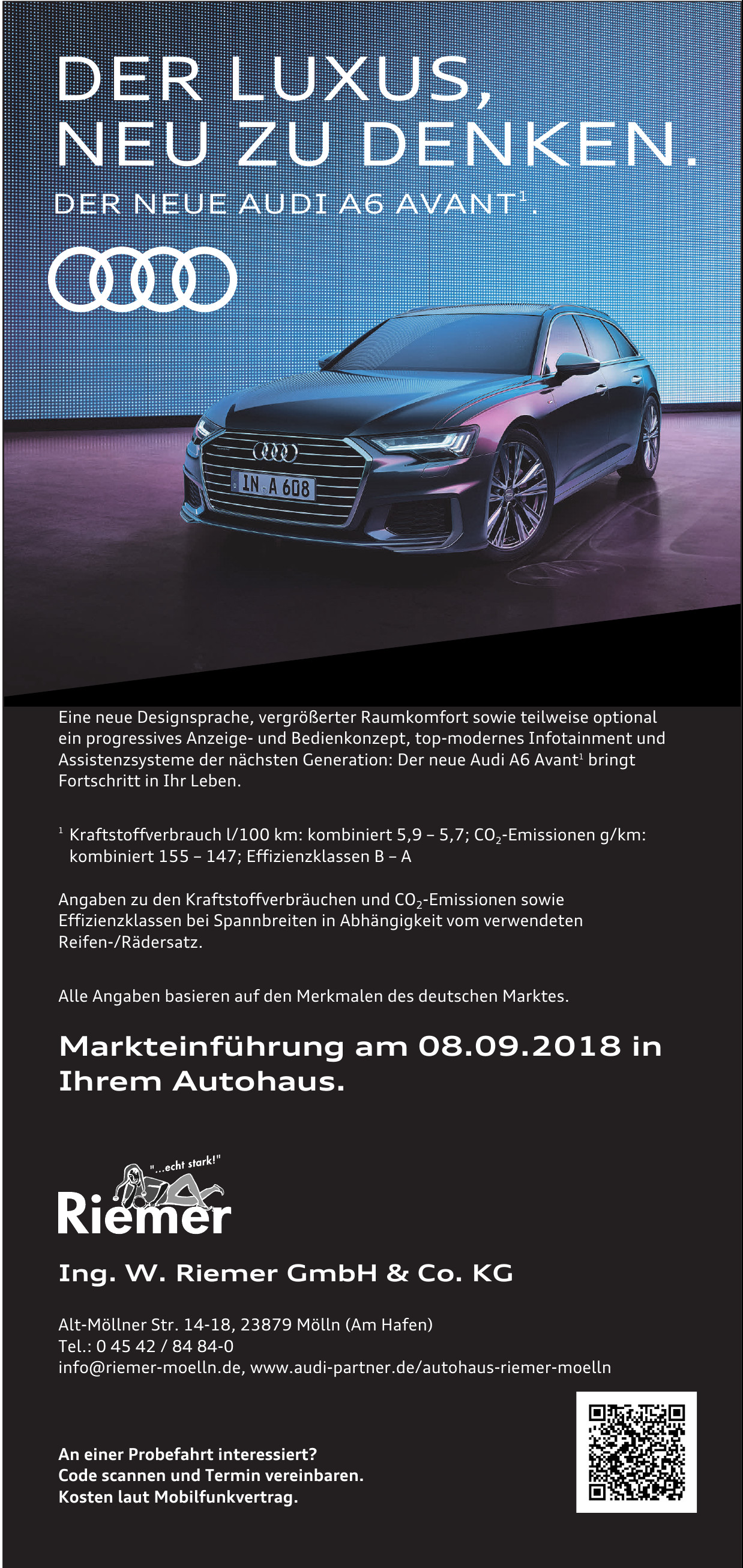 Ing. W. Riemer GmbH & Co. KG